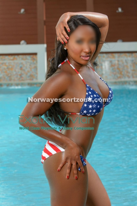 norwegian anal shemale escort oslo